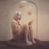 הזוהר הצפוני: שחר רודריג על אלבום הבכורה של אורורה אקסנס - All My Demons Greeting Me As a Friend